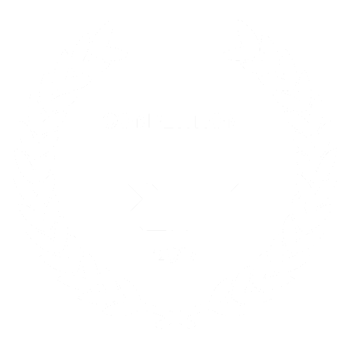 RIDM Official Selection Award